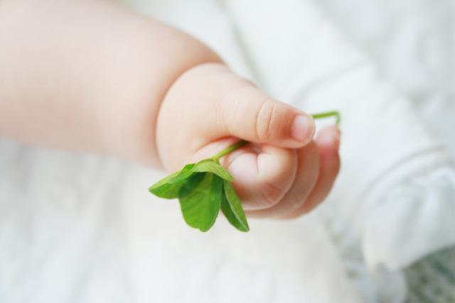 赤ちゃんの柔らかい手