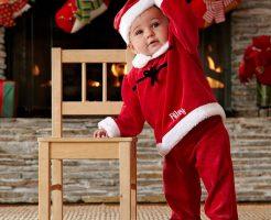 クリスマスの離乳食初期のレシピ