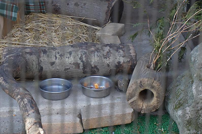 春日井市緑化植物園グリーンピア春日井